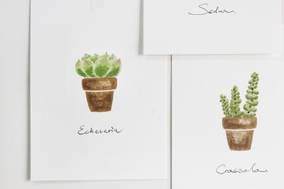 植物可爱专属印章素材