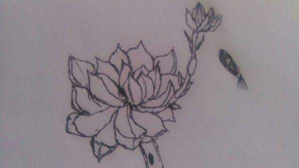 素描画植物简单可爱