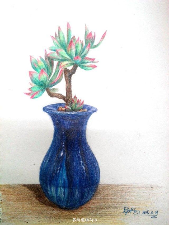 植物画画图片大全素描