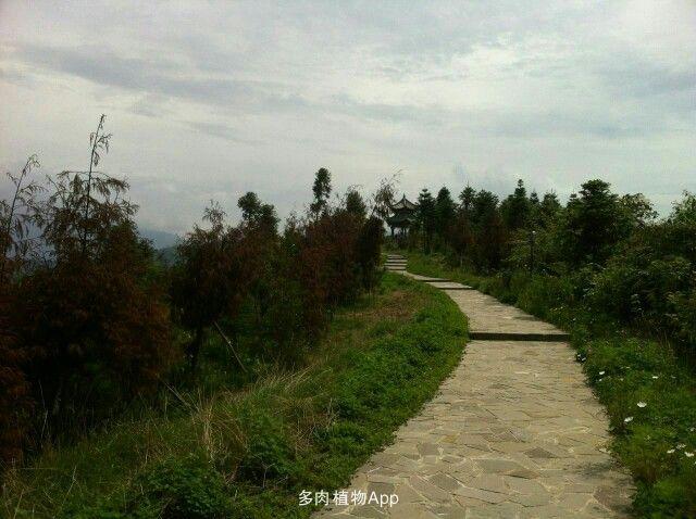 鹞子山,在前往汶川县三江风景区的路上.