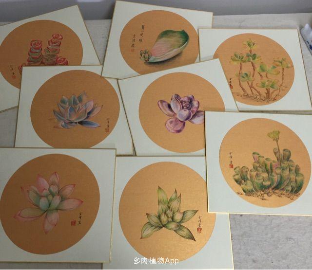 植物绘画基础步骤