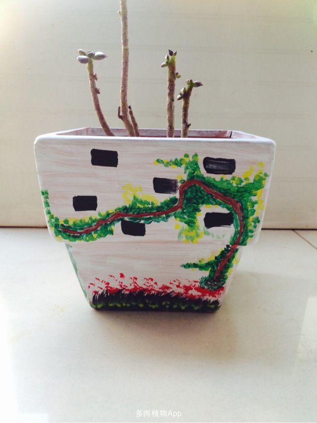 丙烯画手绘花盆