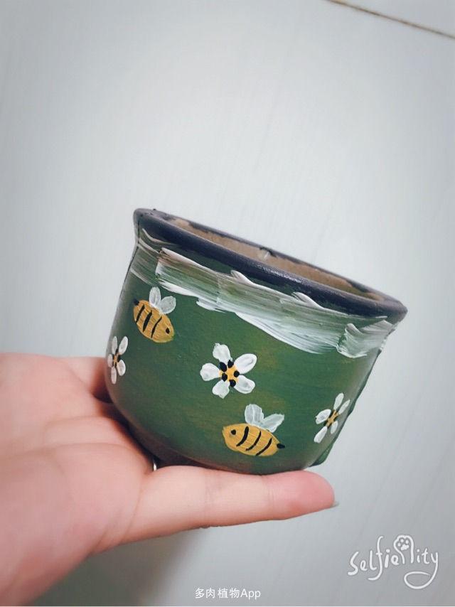 [表情fc]手绘花盆[表情fc]手绘花盆[表情fc]手绘花盆