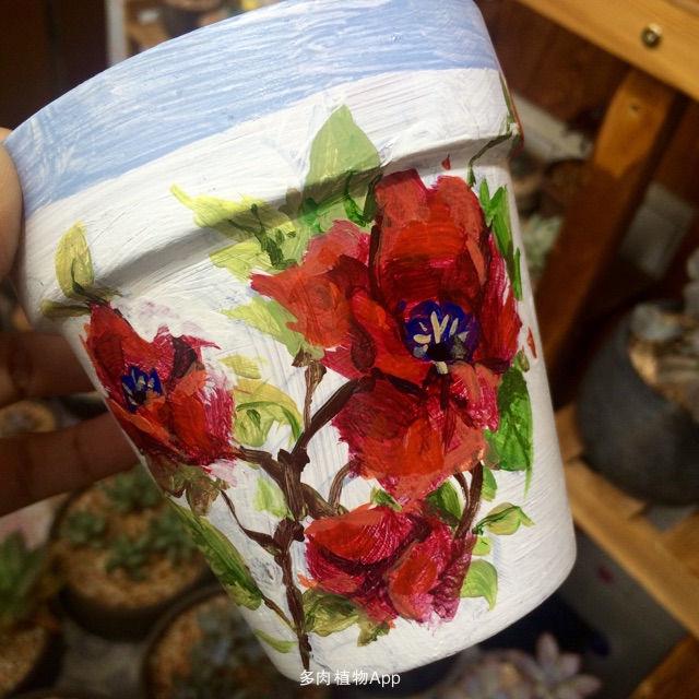 看网上有手绘花盆挺漂亮的,就买了丙烯颜料让孩纸试试,然后我困啦咪